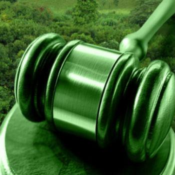 novo-codigo-florestal-jurisprudencia