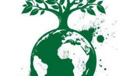 novo_codigo_florestal